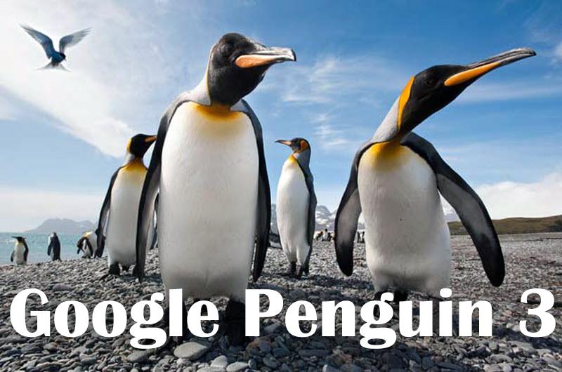 Обновленный алгоритм Google Penguin 3
